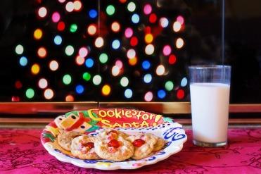 cookies-for-santa-nostalgia