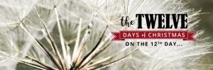 twelve-days-day-twelve-wishes-nostalgia